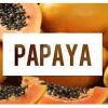 Dominikanische Republik: Papaya – Lechosa, mehr als ein Schlankmacher
