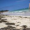 Dominikanische Republik: Punta Cana reagiert auf Plastik und Seetang