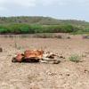 Dominikanische Republik: Im Nordwesten droht die Katastrophe