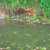 Dominikanische Republik: Alarmierende Lage bei Grundwasserversorgung