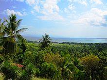 220px-View_of_Haitian_Landscape_hispaniola