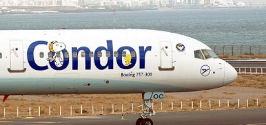 Condor4