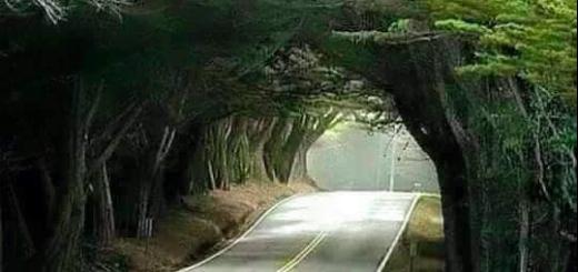 jarabacoatunnel